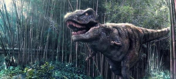 T-Rex v2