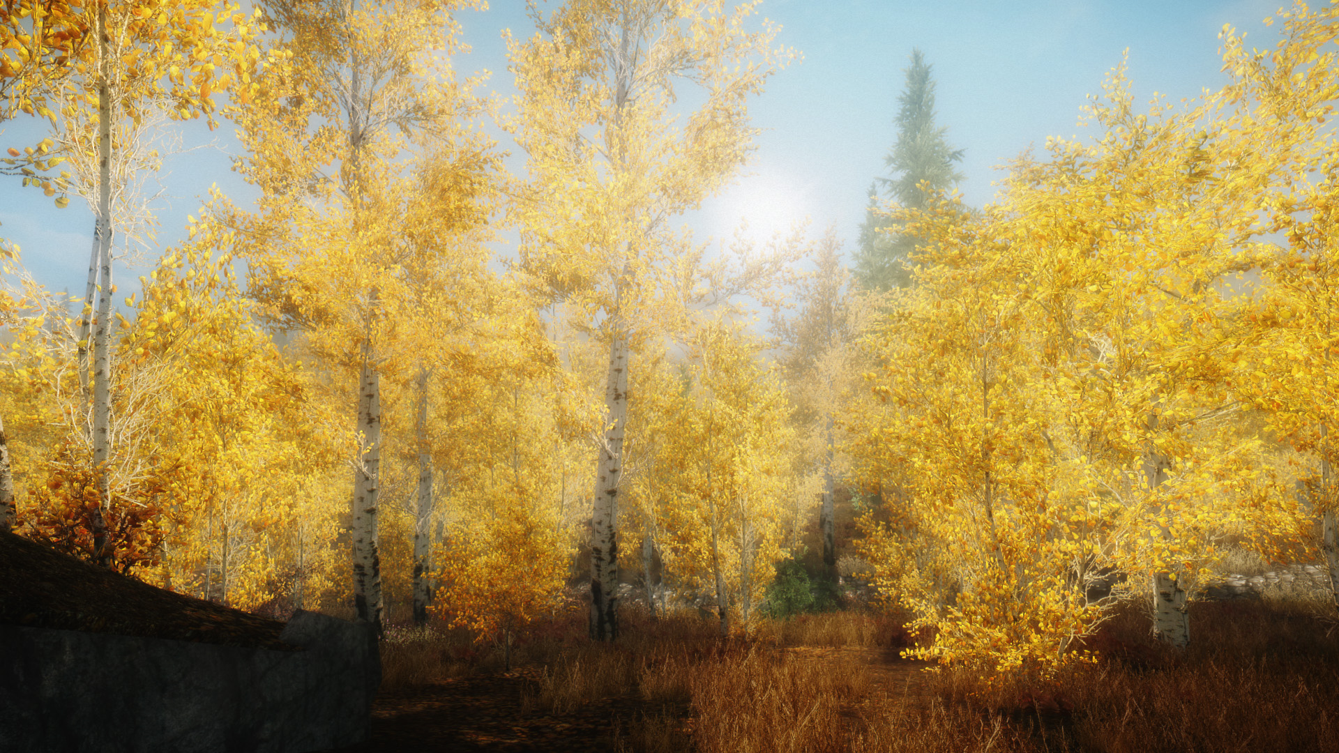 the wilds enb