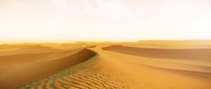 1355704560-desert5