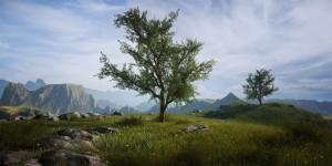Oak_Tree_Lonesome