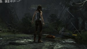 TombRaider_2013_03_06_02_39_02_564