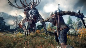 The-Witcher-3-no10