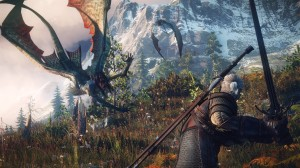 The-Witcher-3-no8