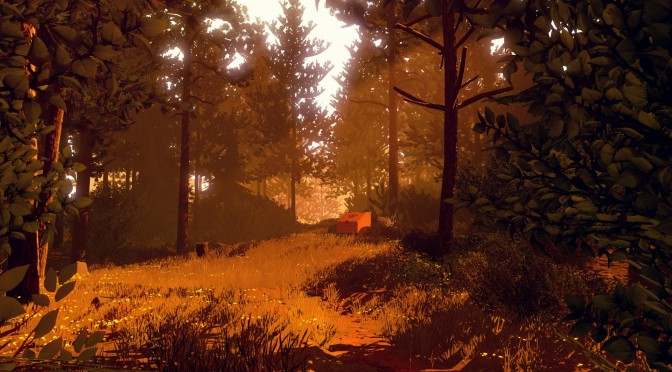 "Here Are 17 Minutes of Gameplay Footage from ""Firewatch"""