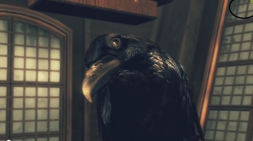 ravens cry 10fps