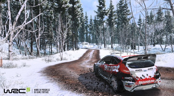 WRC 5 Gets New Screenshots