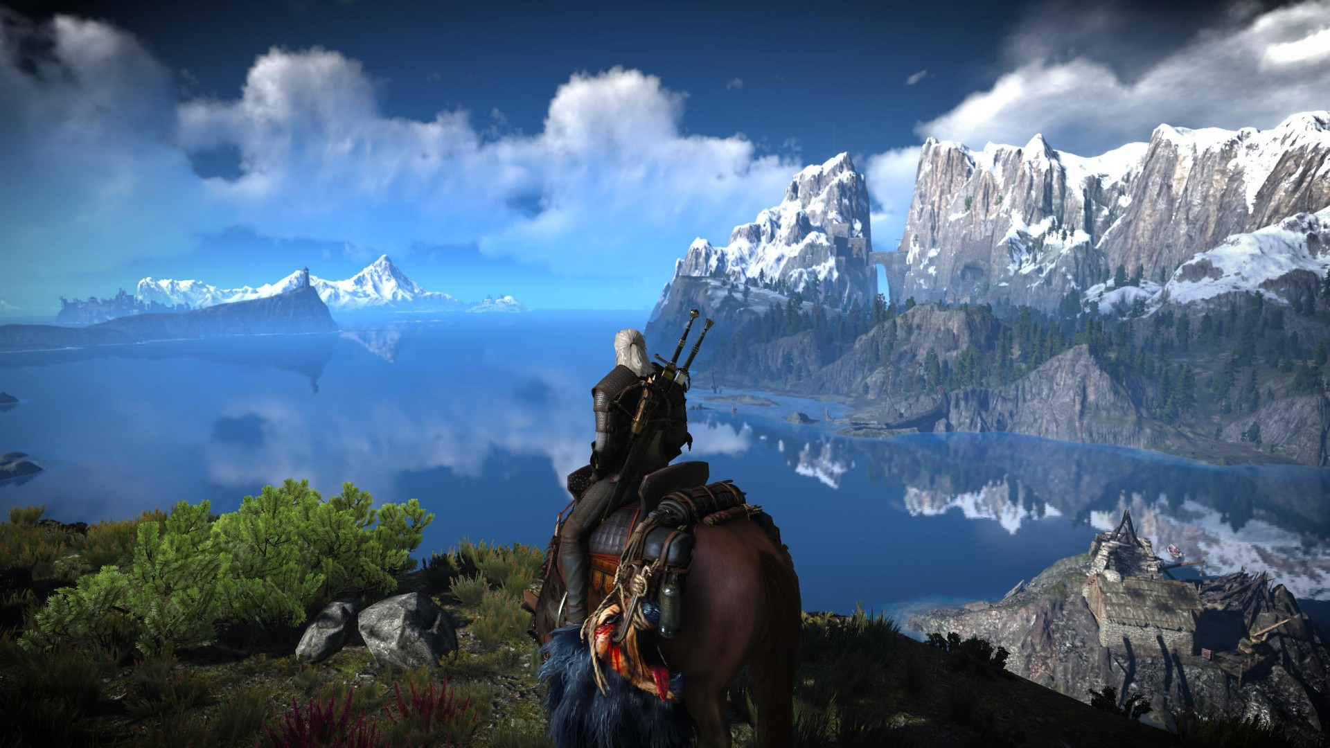 This Mod Aims To Further Overhaul The Witcher 3: Wild Hunt's ...