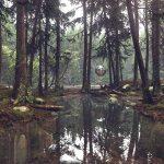 damian-stempniewski-gds-forest-lightng-a