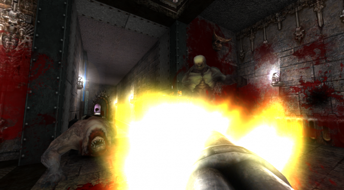 Hunter's Moon is a total conversion that brings Quake 3's characters & weapons to the classic Doom Engine