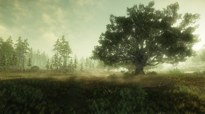 New beautiful screenshots released for Amazon's MMORPG New World