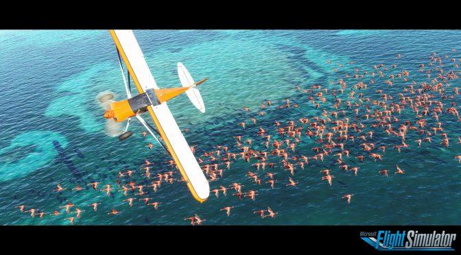 Flight Simulator 2020 feature 3