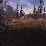 Skyrim Special Edition Grass & Grounds Overhaul Mod-1