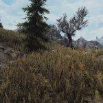 Skyrim Special Edition Grass & Grounds Overhaul Mod-2