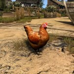 The Witcher 3 HD textures for animals-2