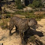 The Witcher 3 HD textures for animals-4
