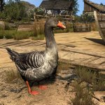 The Witcher 3 HD textures for animals-5