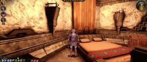 dragon age origins modded-3