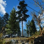 Fallout 4 Commonwealth Landscape Overhaul screenshots-6