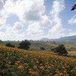 Forza Horizon 5 screenshots 4K-9
