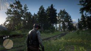 Red Dead Redemption 2 Native 4K-10