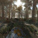 Fallout 4 Another Pine Forest Mod screenshots-5