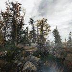 Fallout 4 Another Pine Forest Mod screenshots-6