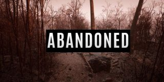 Abandoned feature
