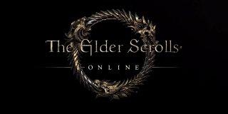 The Elder Scrolls Online feature